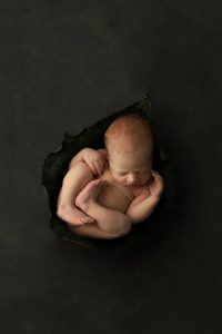 composite newborn baby art photographed in studio
